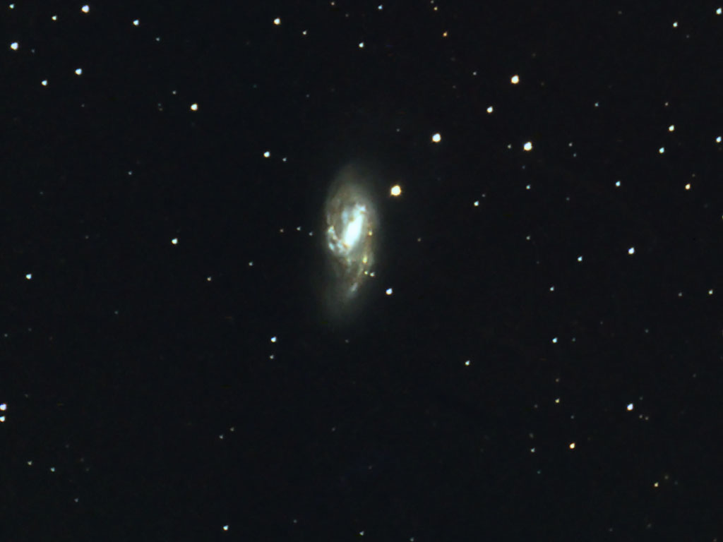 M66(Gallary Picture last taken 4/6/2013 )