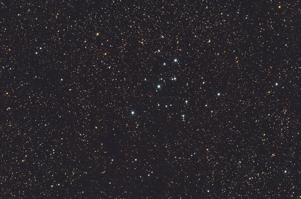 M39(Gallary Picture last taken 7/29/2013 )